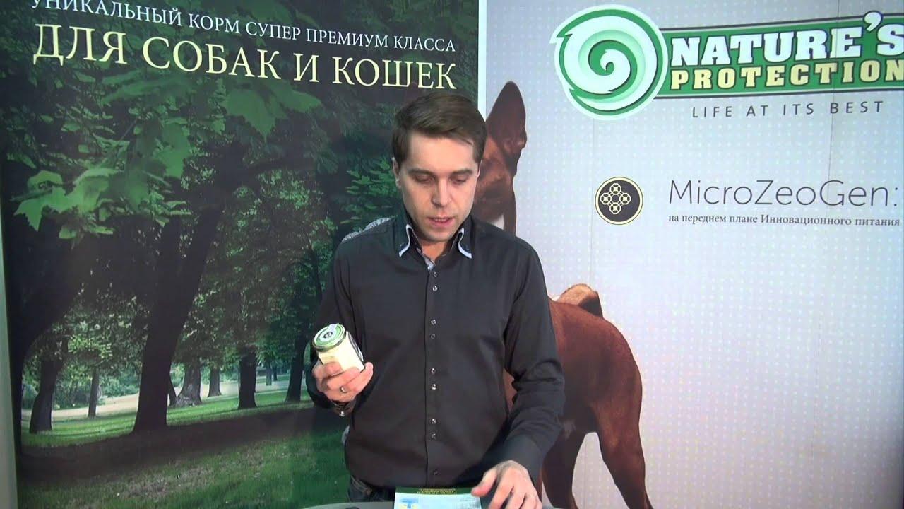 Дмитрий Белкин: На создание уникального корма меня вдохновили мои любимцы
